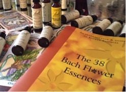 Bach Flower Education - Approved Program